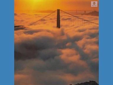 WATCH:  Golden Gate Bridge shrouded in early morning fog