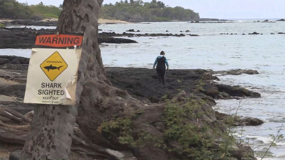 Kimberly Bishop and her husband were kayaking at one of their favorite spots, Anaehoomalu Bay, when she was attacked and bitten by a shark.