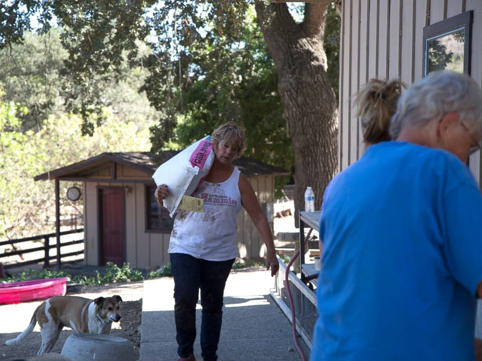 PHOTO: Susan Parkinson carries food to feed the pigs in Solvang, California.