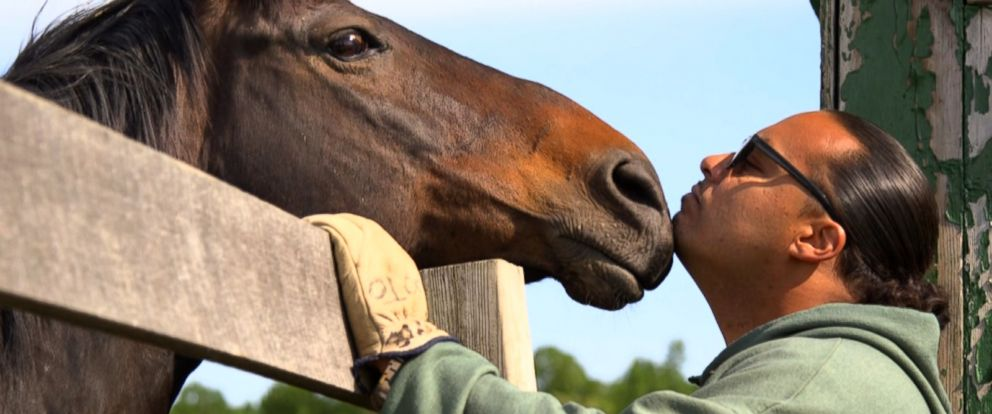 PHOTO: Retired racehorses receive care at Second Chances Program in Wallkill, N.Y.