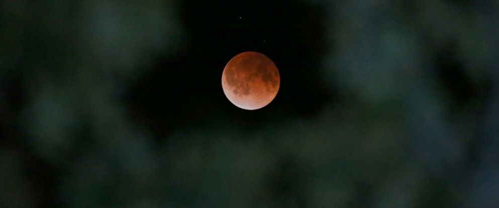 PHOTO: The Earths shadow is cast over the surface of the moon as a total lunar eclipse is seen though a Magnolia tree top in the sky over Tyler, Texas, April 15, 2014.