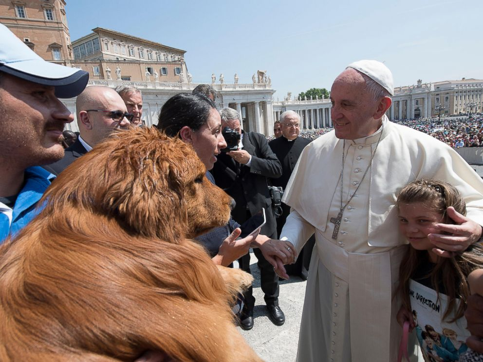 PHOTO: Pope Francis greets members of a marine search and rescue dogs school at the end of his weekly general audience in St. Peters Square at the Vatican, June 8, 2016.