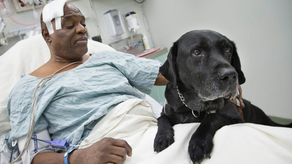 Donors Help Blind Man Keep Hero Dog That Saved Him After