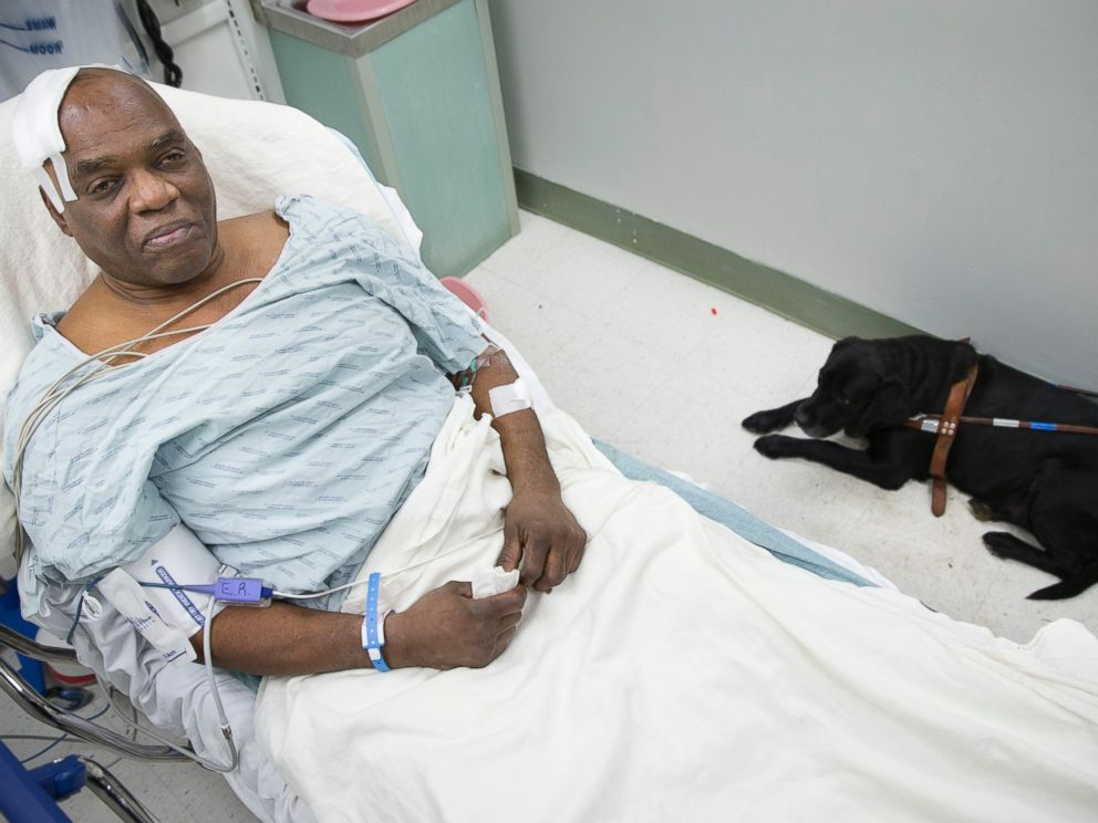 PHOTO: Cecil Williams sits with his guide dog Orlando in his hospital bed following a fall onto subway tracks from the platform at 145th Street, Dec. 17, 2013, in New York.