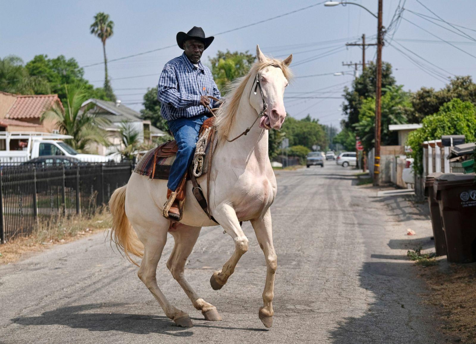 Urban Cowboys Raise Horses in Compton Photos - ABC News