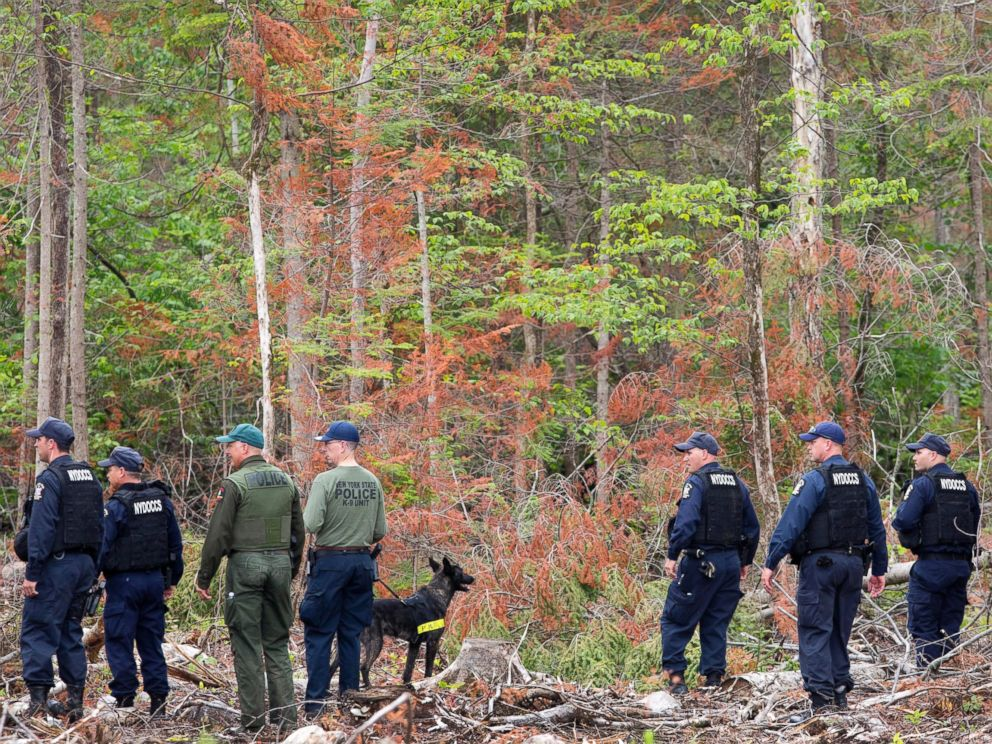 PHOTO: Corrections officers and a police dog start a search of woods near the Clinton Correctional Facility, June 16, 2015, in Dannemora, N.Y.