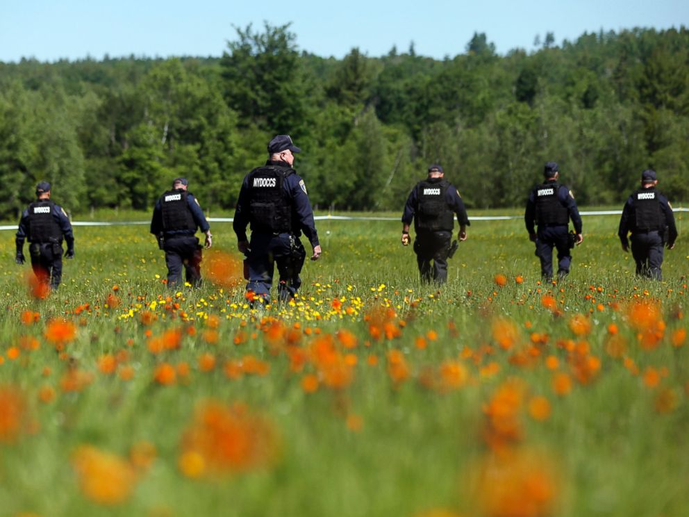 PHOTO: Law enforcement officers walk in a field along Route 3, June 13, 2015, in Saranac, N.Y.