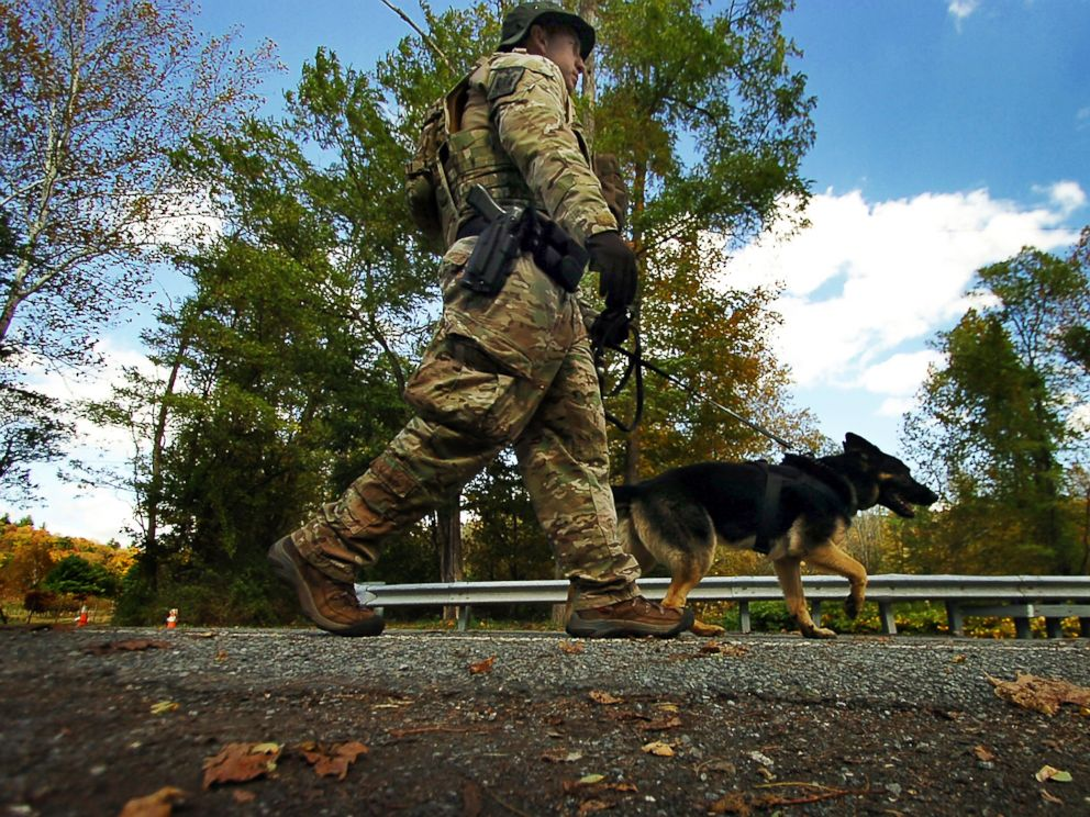 PHOTO: A member of law enforcement walks a K-9 dog to the woods, Oct. 8, 2014, in Price Township near Canadensis, Pa., searching for killer Eric Frein.