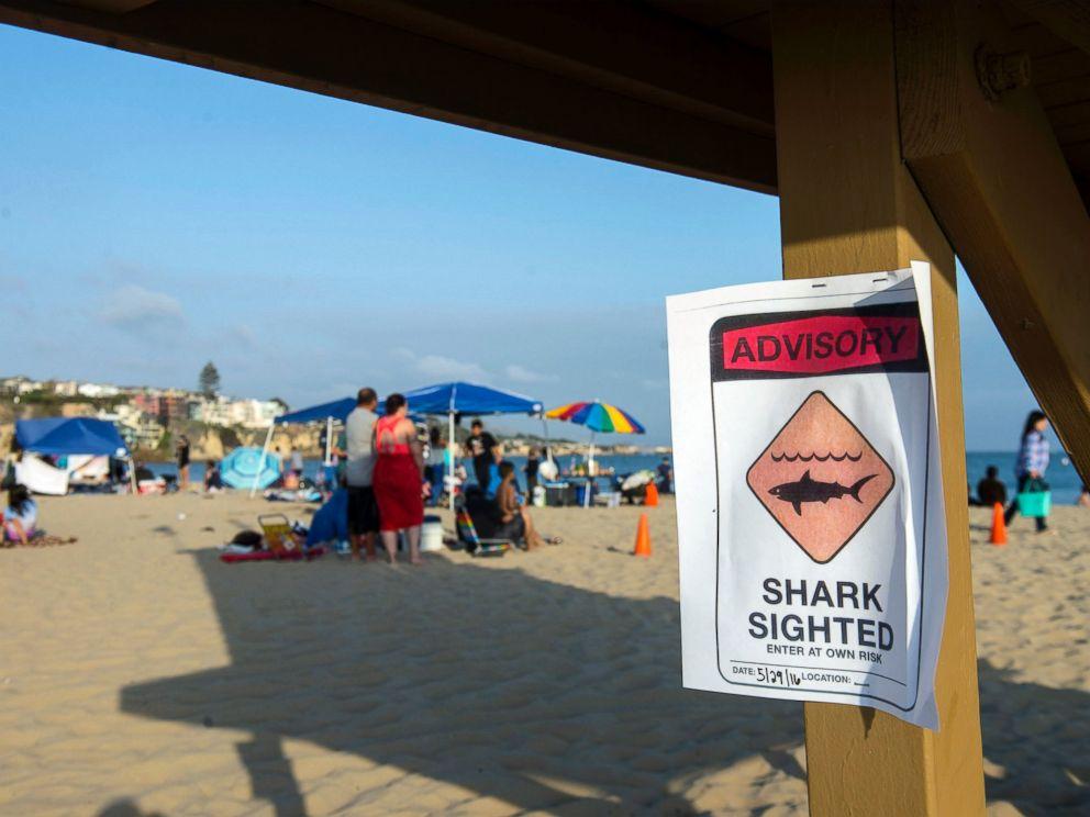 PHOTO: A possible shark sighting at Corona del Mar State Beach closes the shoreline on Sunday, May 29, 2016.