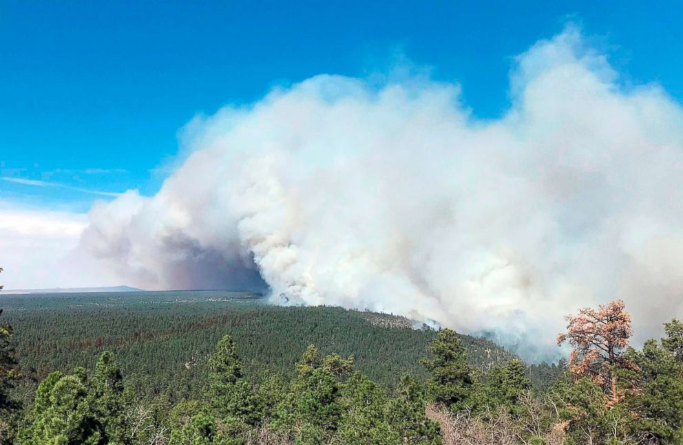 Arizona towns ordered to evacuate as wildfire grows