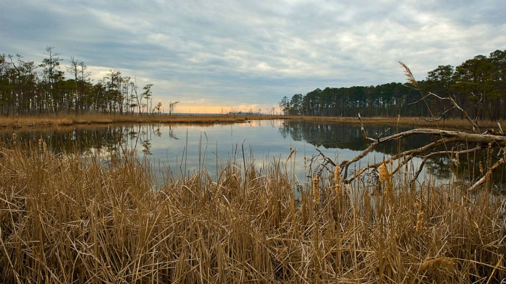 Maryland wildlife refuge fights to protect American history from climate change