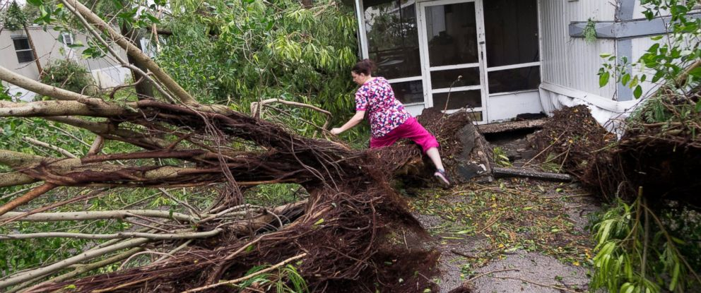 PHOTO: A Seminole mobile home park resident climbs over a uprooted tree in Fort Pierce, Florida, Oct. 7, 2016.