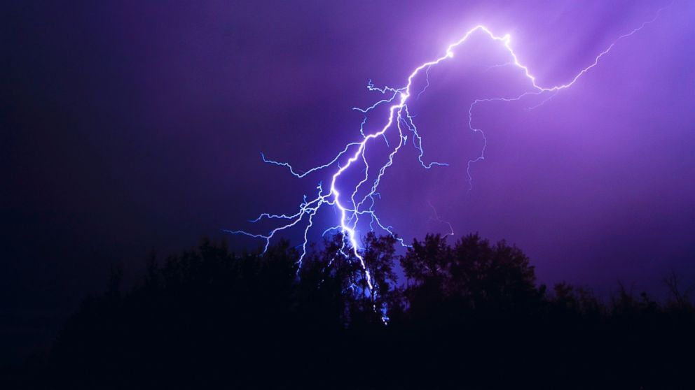 Connecticut man killed when tree branch struck by lightning