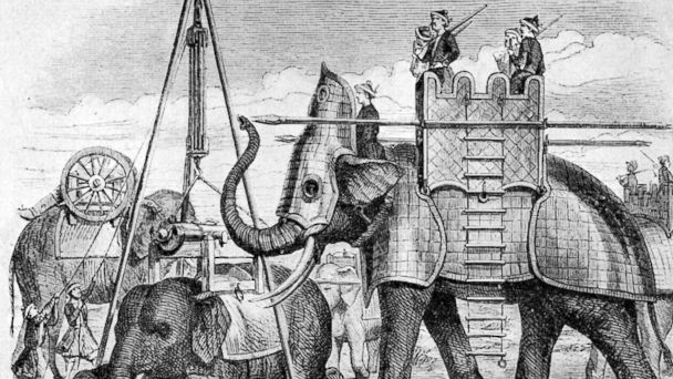 PHOTO: In this archival illustration, a war elephant of the Siamese Army is pictured.