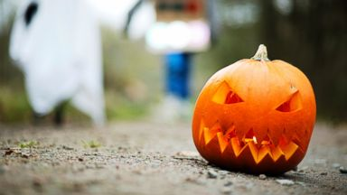 PHOTO: Happy Halloween!