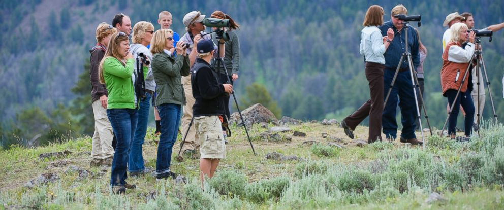 PHOTO: Tourists are pictured in Yellowstone National Park in Wyoming on July 13, 2011.