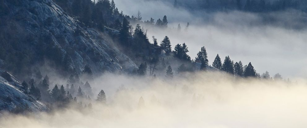 PHOTO: Fog is seen among the mountains and evergreens in Yellowstone National Park in Wyoming.