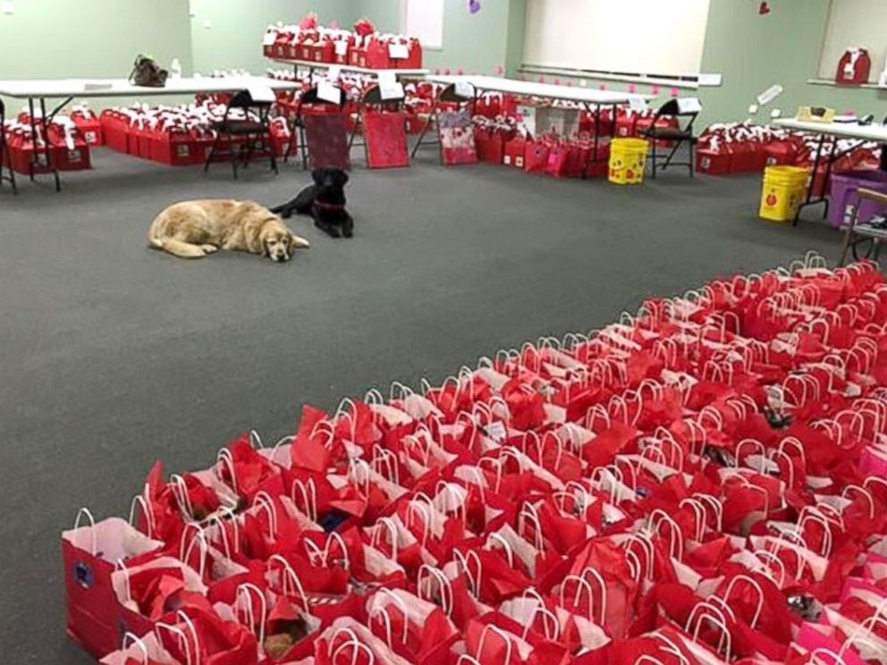 Service Dogs Trained By Inmates Deliver Valentine S Day Treats Abc