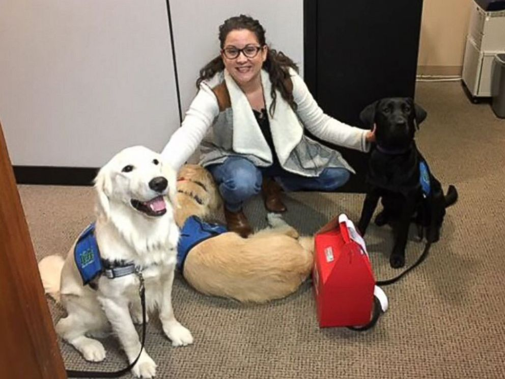 PHOTO: ICANs Puppy Love Valentine project has service dogs trained by prison inmates deliver Valentines Day treats throughout Indianapolis.