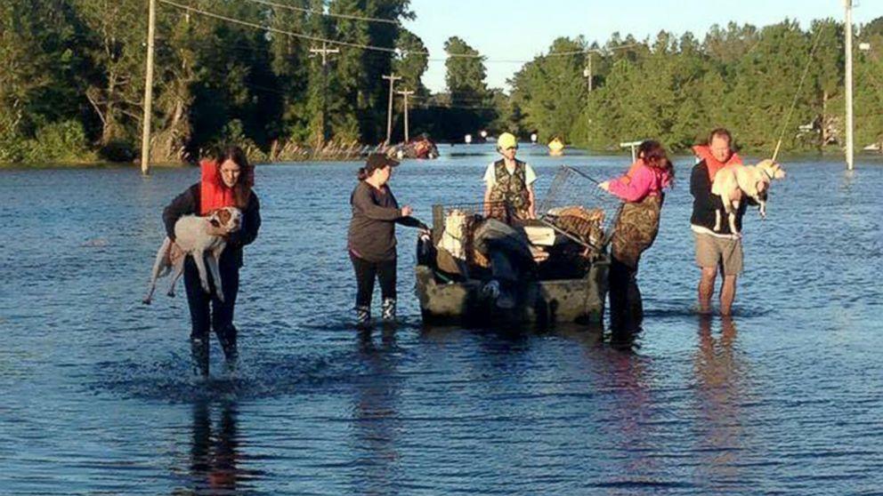 Volunteers Rescue Pets in Wake of Hurricane Matthew - ABC News