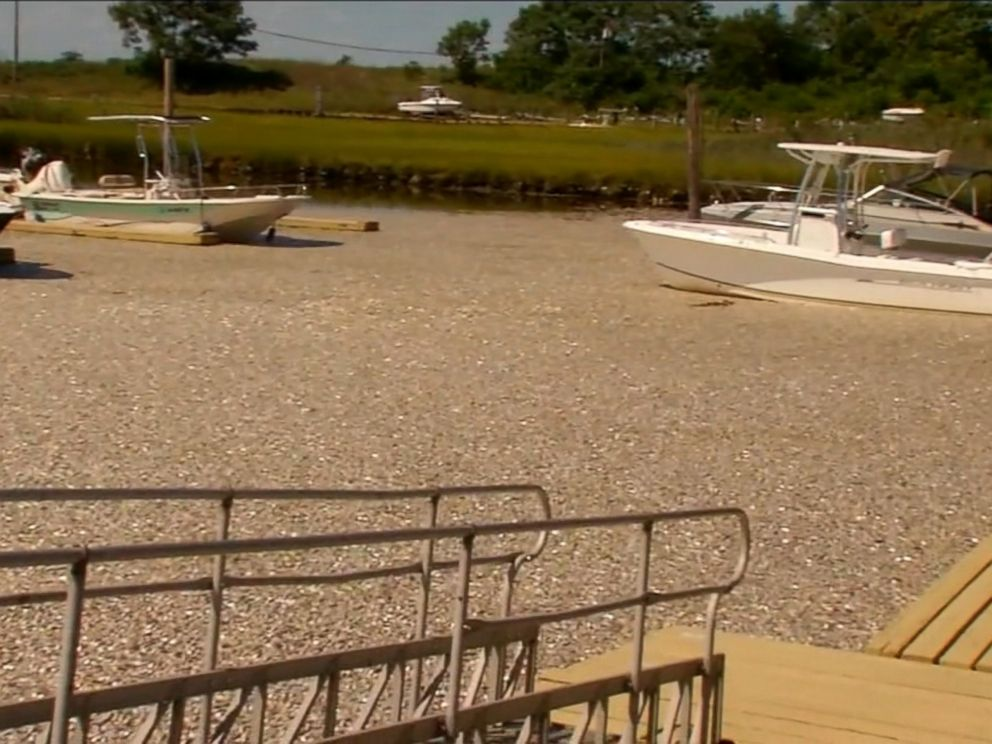 PHOTO: Hundreds of thousands of dead fish have turned up in Waackcaack Creek in Keansburg, New Jersey.
