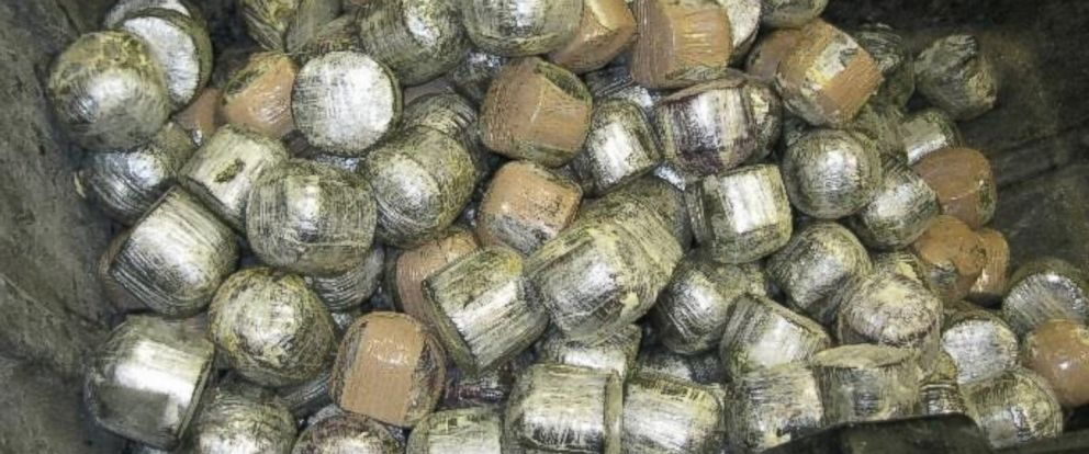 PHOTO: U.S. Customs and Border Protection, Office of Field Operations (OFO) at the Pharr International Bridge cargo facility discovered 1,423 pounds of alleged marijuana within a commercial shipment of fresh coconuts.