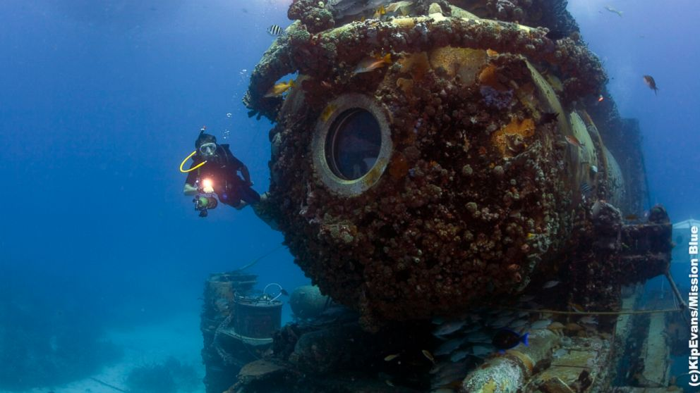 Fabien Cousteau is an oceanographic explorer.