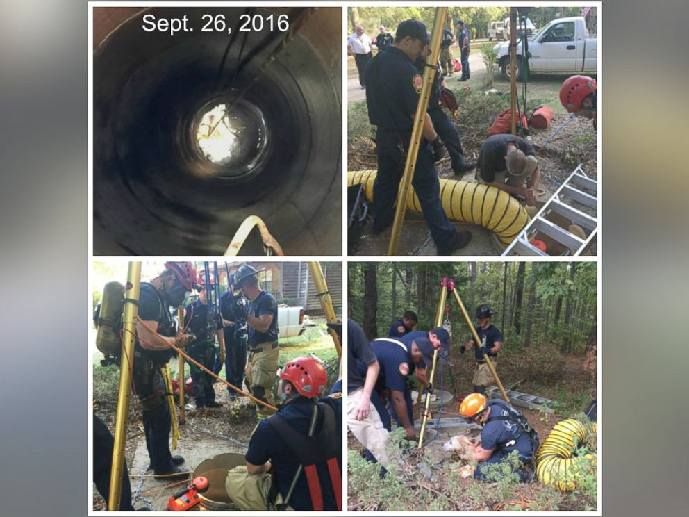 PHOTO: Firefighters and animal control officers in Henry County, Georgia, rescued a dog that got trapped in a 40-foot-deep well in McDonough, Georgia, on Sept. 26, 2016