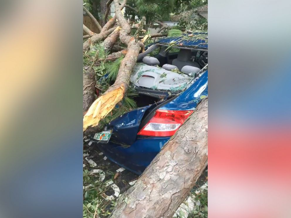 PHOTO: Wind gusts from Hurricane Hermine caused a tree to fall on top of a sedan in a residential Tallahassee neighborhood near Florida State University.