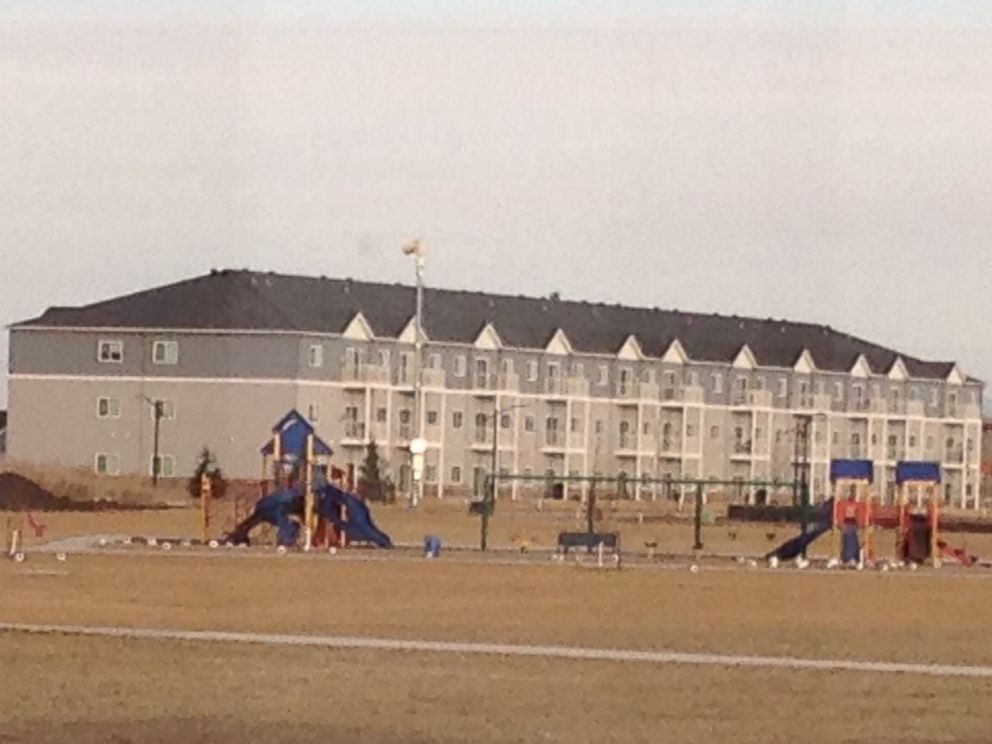 PHOTO: Jackrabbits dot the ground near a playground.