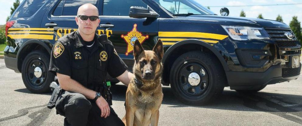 PHOTO: Six year old Nero, a Belgian Malinois K9, poses with its handler Deputy Marc Nye. Nero was recently diagnosed with lymphoma, and given one to two years to live.
