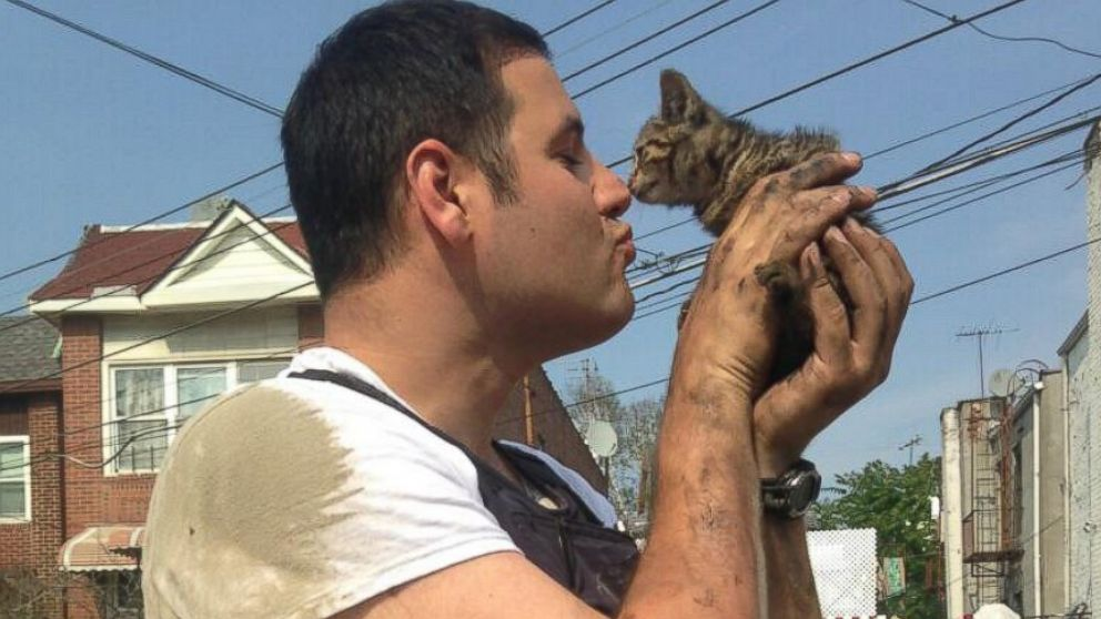The New York Police Department posted this photo after one of its officers saved a kitten from an engine block.