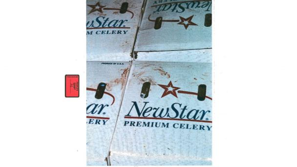 PHOTO: Blood on boxes inside the Vals Foods produce cooler is seen here in this police evidence photo.
