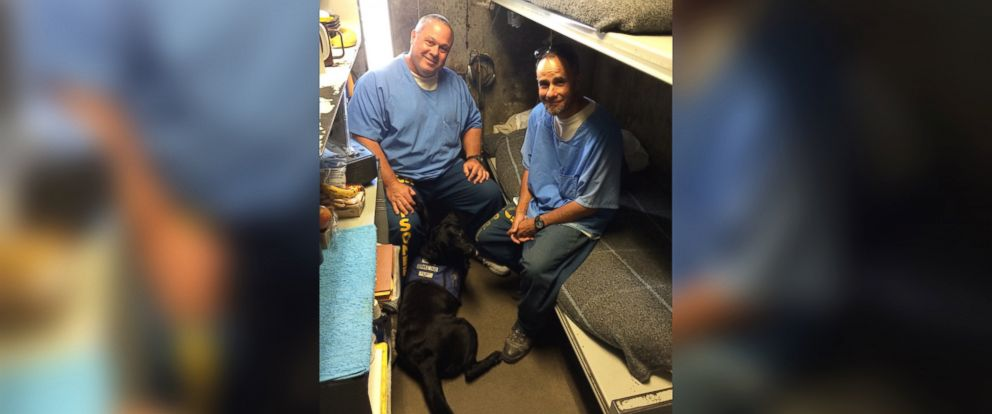 PHOTO: Groups of inmates at the Richard J. Donovan Correctional Facility in San Diego, California, and at the Mule Creek State Prison in Ione, California, are helping train puppies to become service dogs.