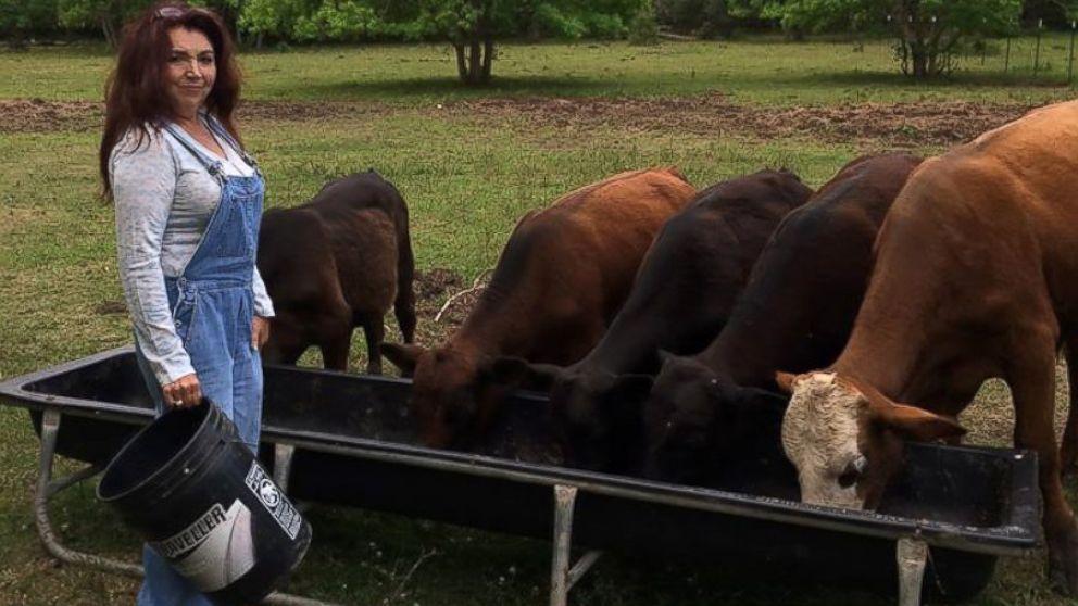 Image result for cattle farmer
