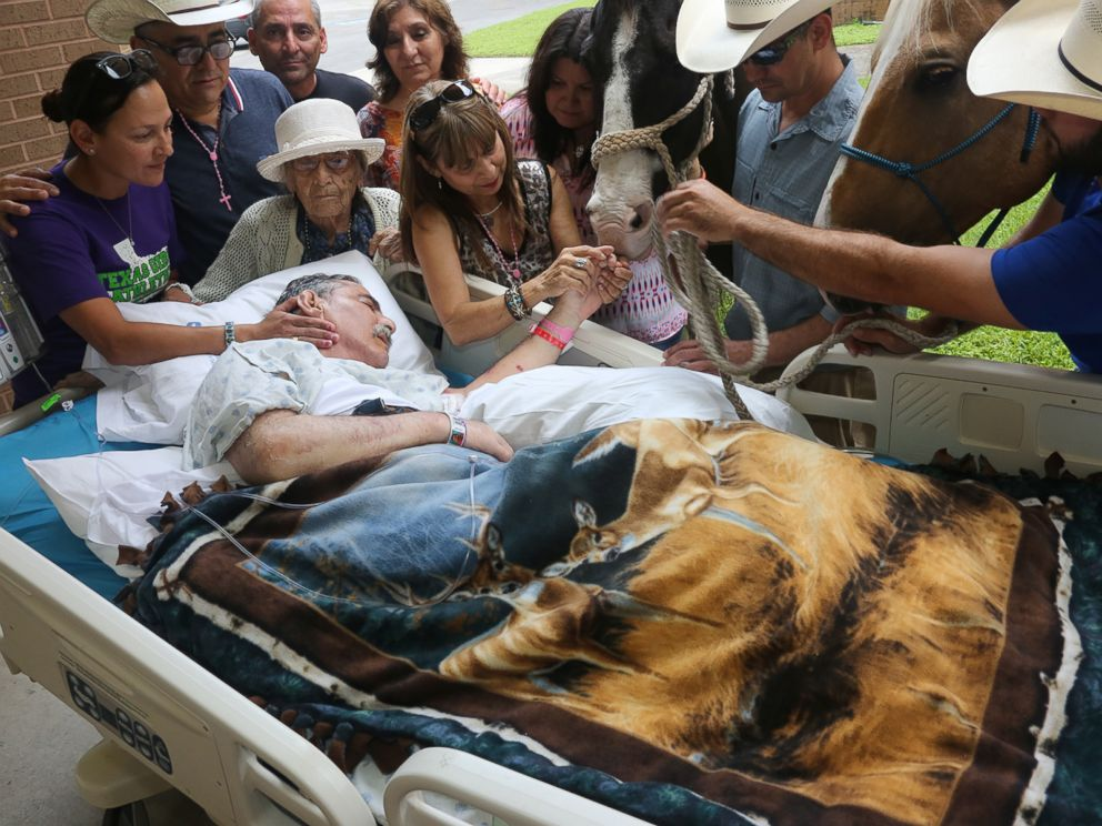 Sick Veteran Says Farewell To His Beloved Horses One Last