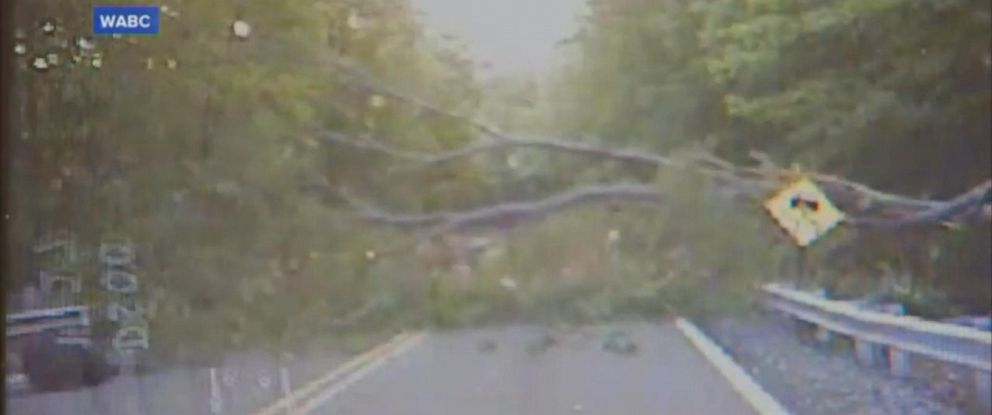 PHOTO: A 33-year-old officer with the Ringwood Police Department was almost pinned by a giant tree that came crashing down on a New Jersey road.