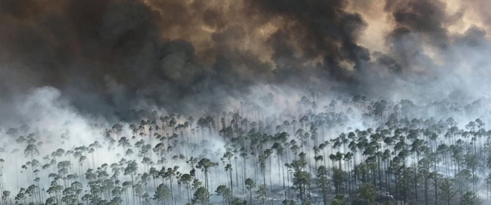 PHOTO: The West Mims fire burns in the Okefenokee National Wildlife Refuge in Georgia, April 25, 2017.