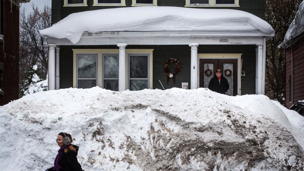 buffalo buried by wall of snow photos