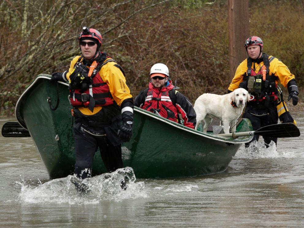 PHOTO: Workers and a search dog head into floodwaters on Highway 530 as search work continues in the mud and debris from a massive landslide that struck Oso near Darrington, Washington March 29, 2014.