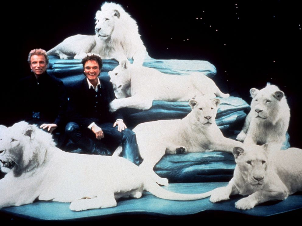 PHOTO: Siegfried & Roy with their white lions at their Las Vegas Show Siegfried & Roy: The Magic Box, in 1999.