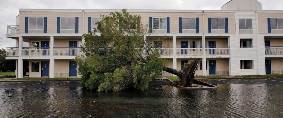 FILE PHOTO: A fallen tree and flood waters sit in a hotel parking lot after Hurricane Dorian swept through, in Wilmington, North Carolina, U.S., September 6, 2019. REUTERS/Jonathan Drake/File Photo