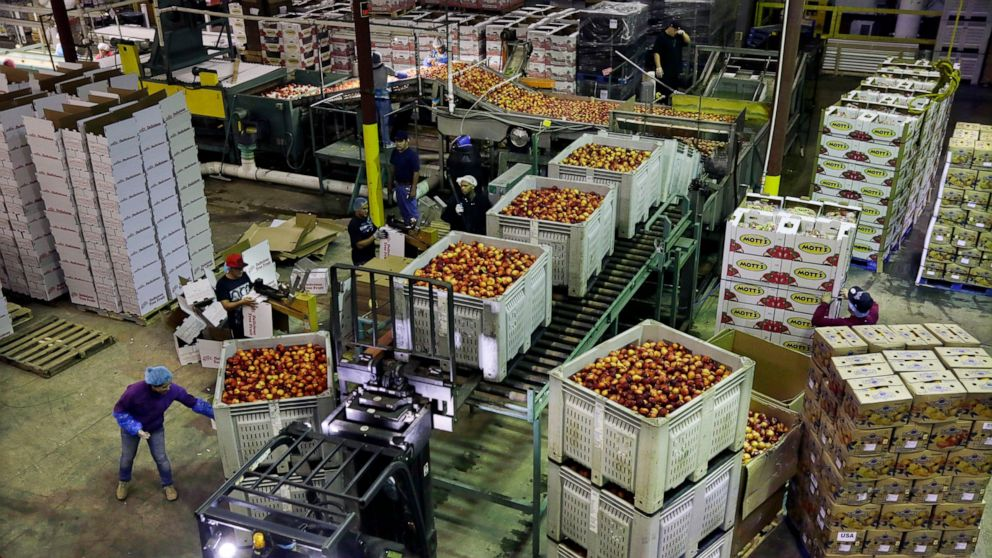 US wholesale prices fell 0.2% in June as food costs plunged