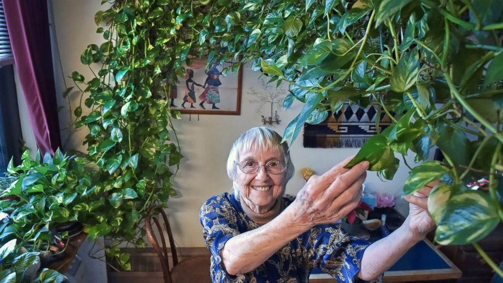 """In this Tuesday, Jan. 8, 2018 photo, Gabrellen """"Gabby"""" Pfarr, poses in her Lancaster, Pa. home, along with her beloved houseplant. Pfarr, who's dying of cancer, is trying to find a home for her 15-foot-long plant. (Dan Marschka/LNP/LancasterOnline via AP)"""