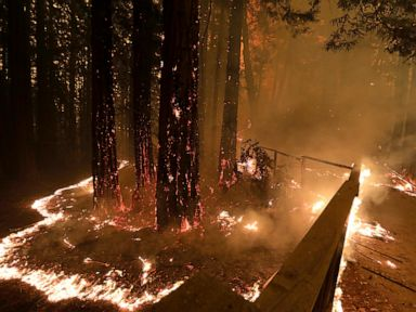 California winds easing after sparking fires, power outages