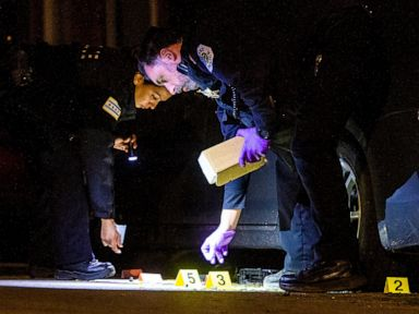 New online tool to track Chicago gun suspects draws fire