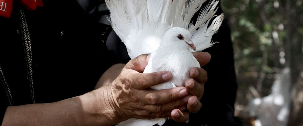 A mariachi musician holds onto a dove to be released at a burial service in Ciudad Juarez, Mexico, Thursday, Aug. 8, 2019, for elementary school principal Elsa Mendoza, who was killed in the mass shooting at a Walmart in El Paso. Mexican officials sa