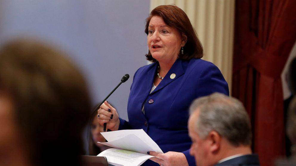 カリフォルニア知事の計画に拒否権を行使する環境規則案