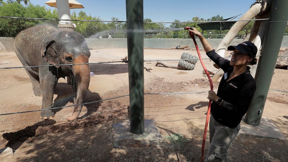 The Latest: Phoenix reaches hottest temperature of the year