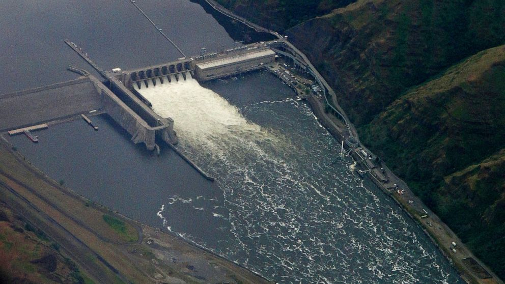 US: Snake River dams will not be removed to save salmon - ABC News